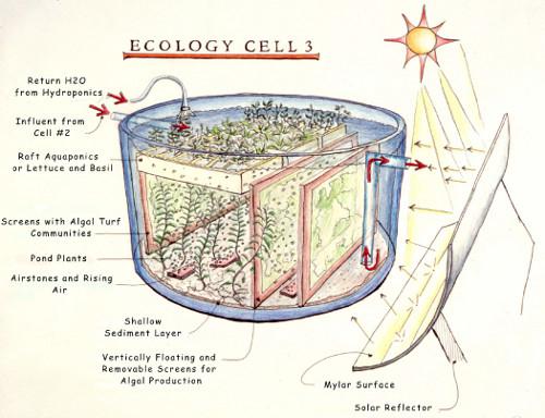 Eco-Machines